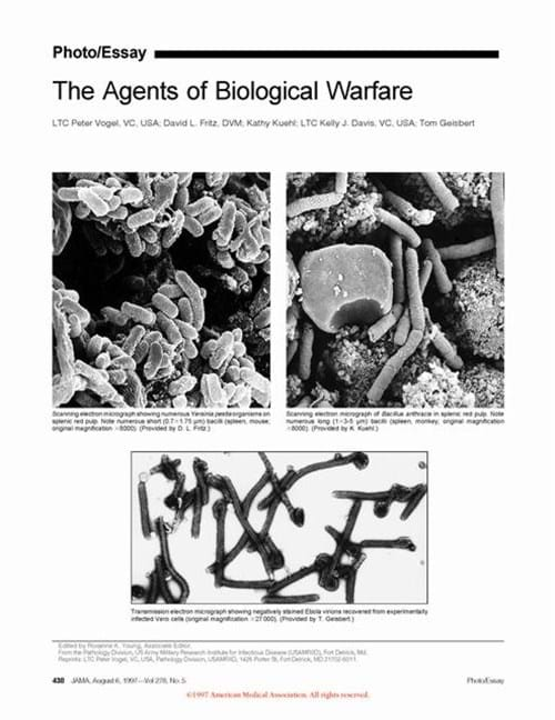 Photo/Essay